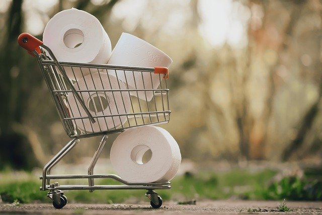 rolls of toilet paper in a tiny grocery cart